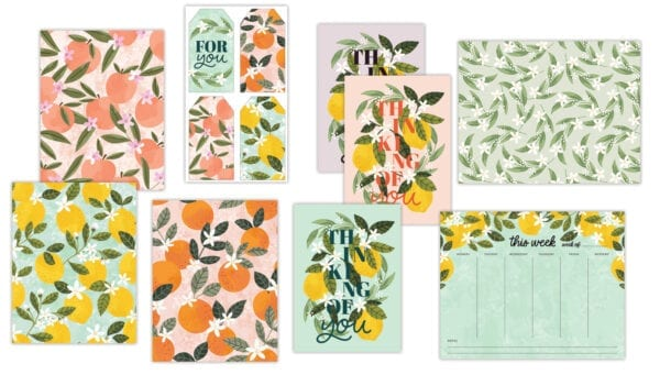Fresh Squeezed Stationery Bundle